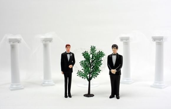 Video Still, The Art Guys Marry A Plant